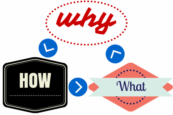 why how what infographic