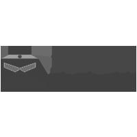 ninja imports logo 200px greyscale
