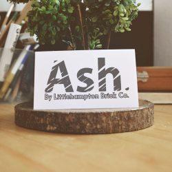 ash logo 1000 by 1000 3