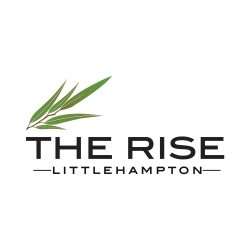 the rise logo example 2