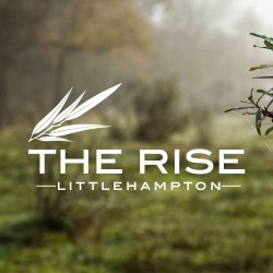 the rise logo example