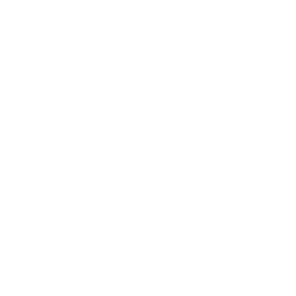 Recal Media White Flag icon
